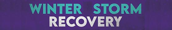 WinterStormRecovery- Banner_sKINNY.jpg