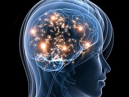 Harvard's MRI Study: Meditation Literally Rebuilds The Brain's Gray Matter In 8 Weeks