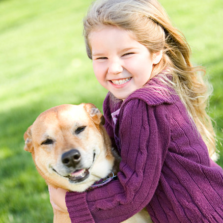 Calm assertive energy is the energy of leaders –  with either people or with your pets!