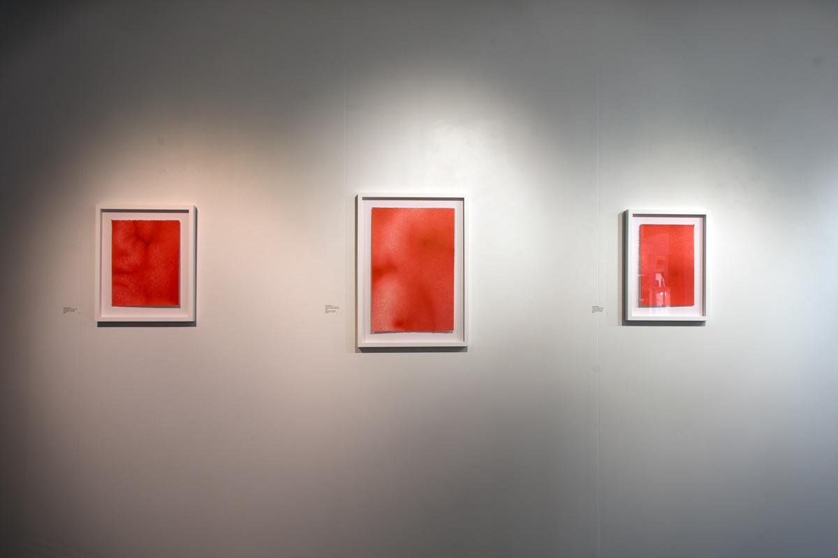Pātaka Toi Gallery, 2018