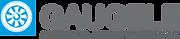 Gaugele_logo_uz-300x65.png