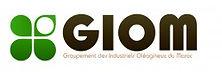 logo-folea-01-250x81.jpg