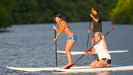 Stand-Up-Paddle-Board-Tours.jpg