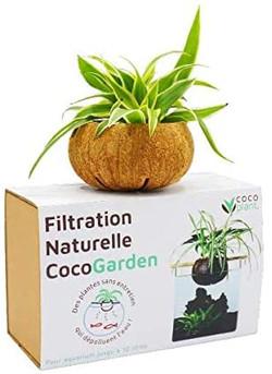 Cocogarden le filtre d'aquarium