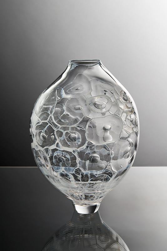Porifera_CA IV