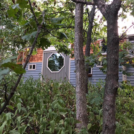 View of Tiny Home from the woods.