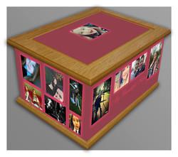 Bespoke memory box 3