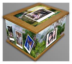 Bespoke memory box 1
