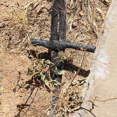 The Cross in my Neighborhood