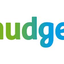 nudge logo.png