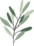 pflanze.tif