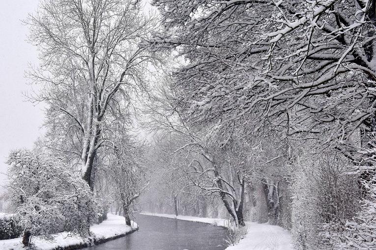 PrintPhotos Winter 04