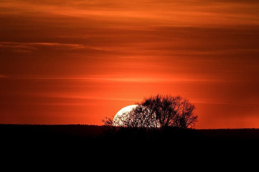 PrintPhotos Sunset 19