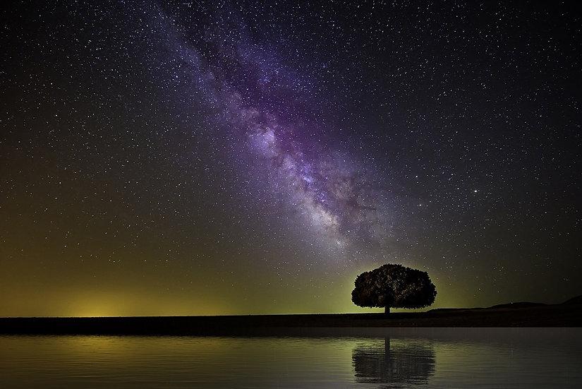 PrintPhotos Milky Way 01