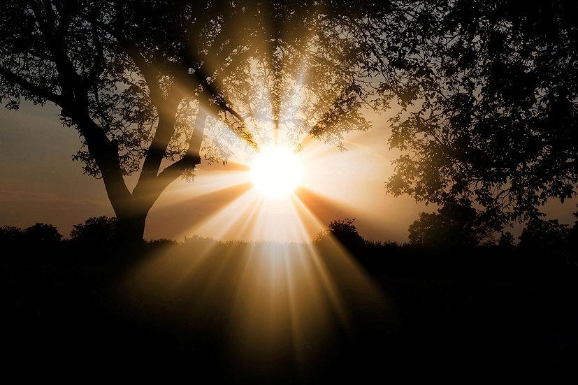 PrintPhotos Sun 01