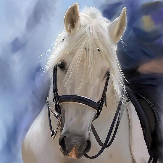 PrintPhotos Horse 05