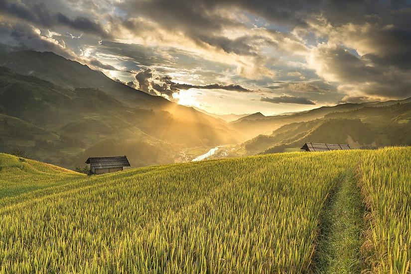 PrintPhotos Vietnam 01