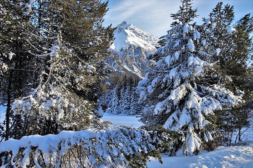 PrintPhotos Snow 03