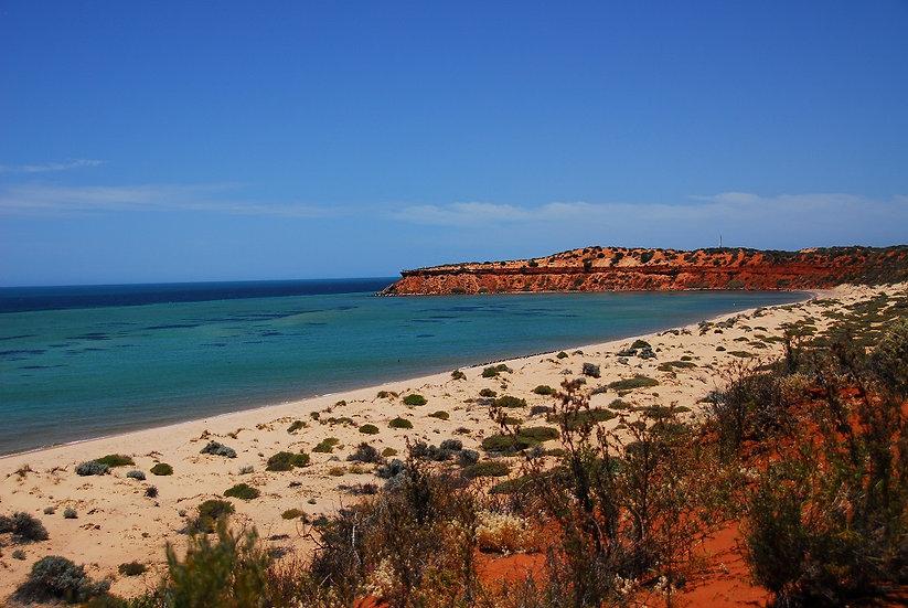 Shark Bay 02