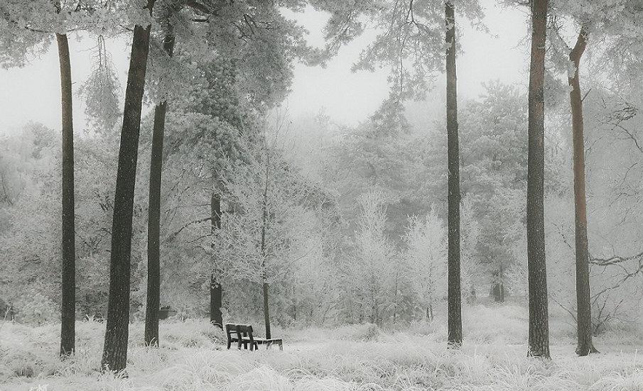PrintPhotos Winter 05
