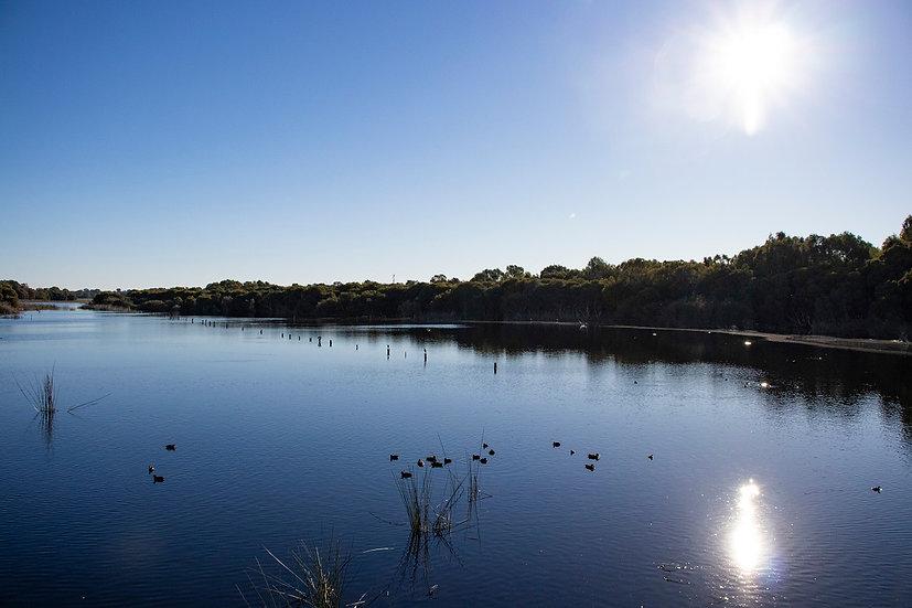 Lake Joondalup - Western Australia 02