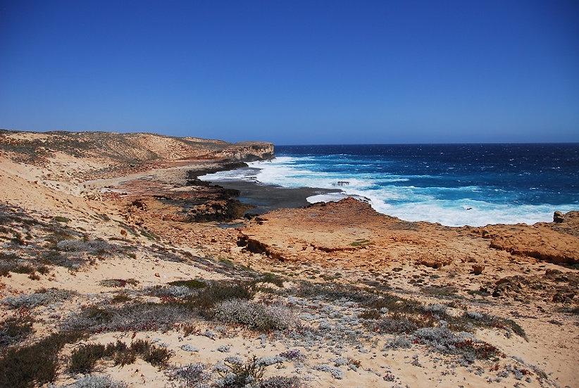 Shark Bay 01