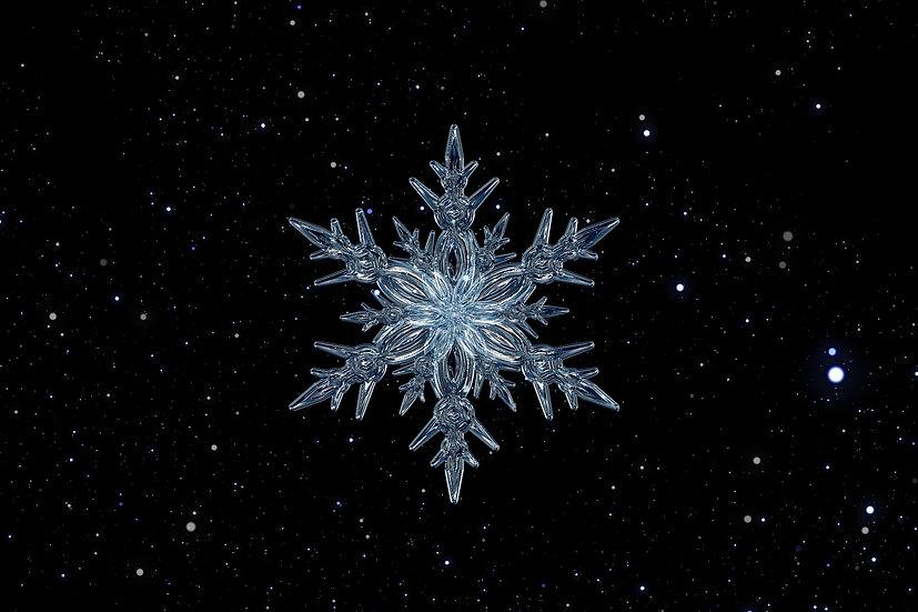 PrintPhotos Snowflake 01