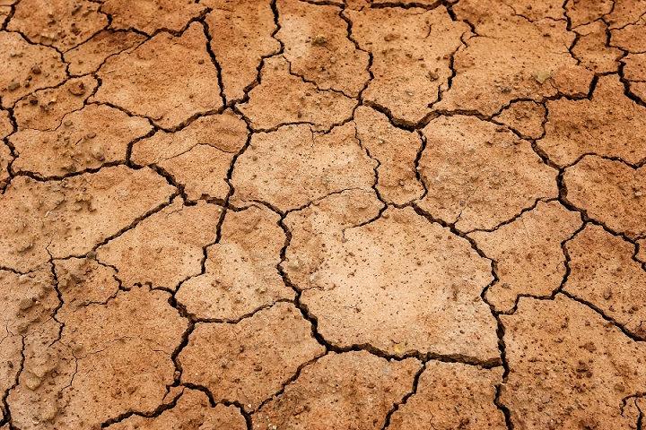 PrintPhotos Drought 02