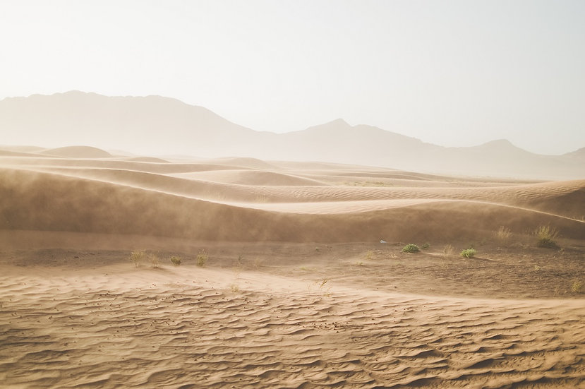PrintPhotos Desert 03