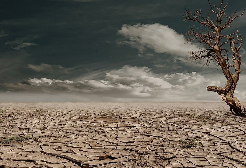 PrintPhotos Desert 01