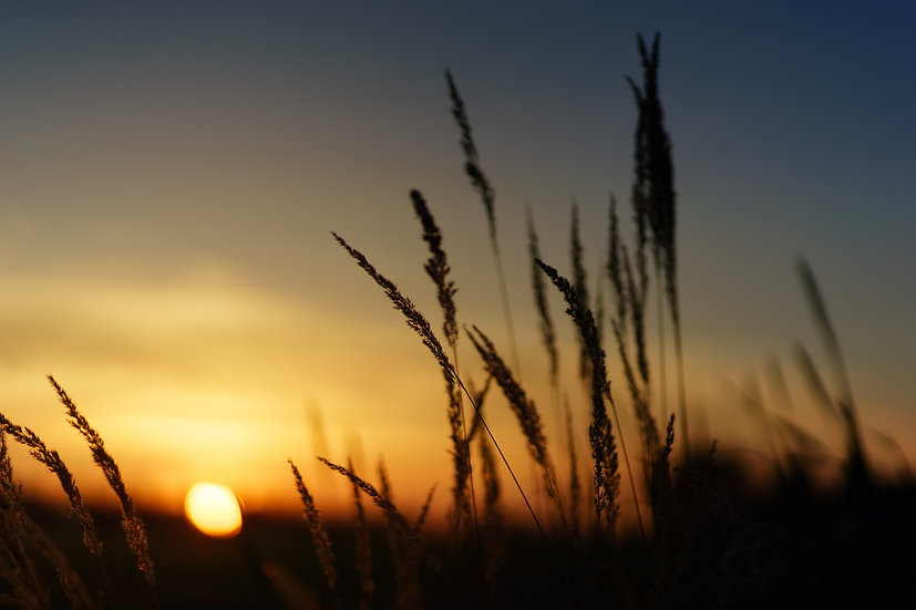 PrintPhotos Sunset 22