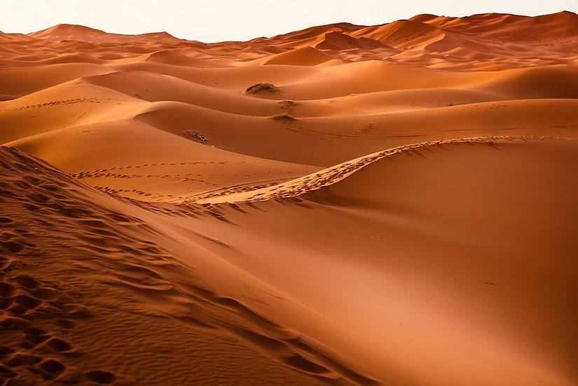 PrintPhotos Desert 02