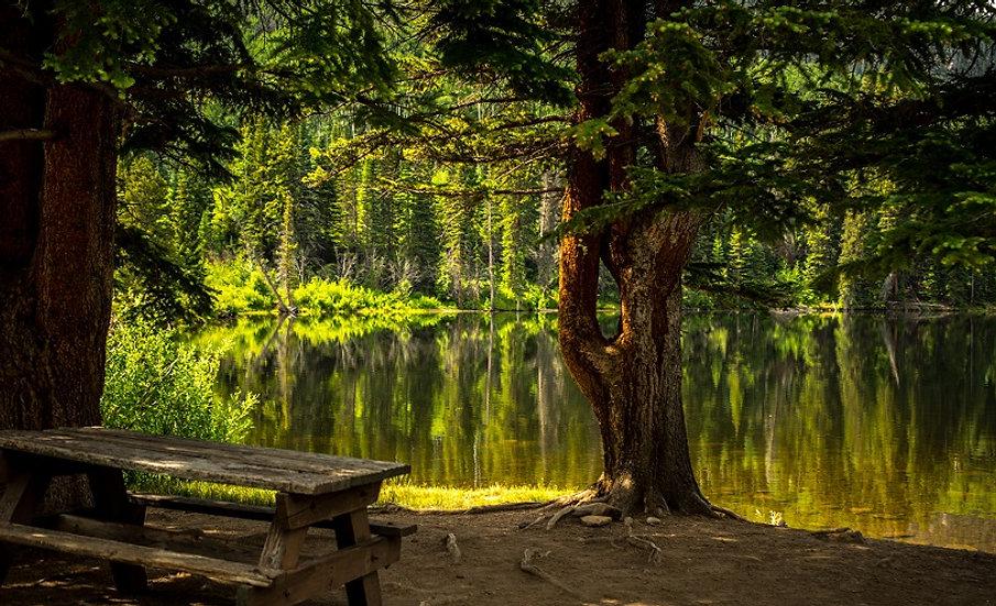 PrintPhotos Bench at Lake 01