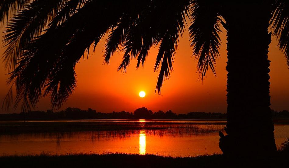 PrintPhotos Sunset 34