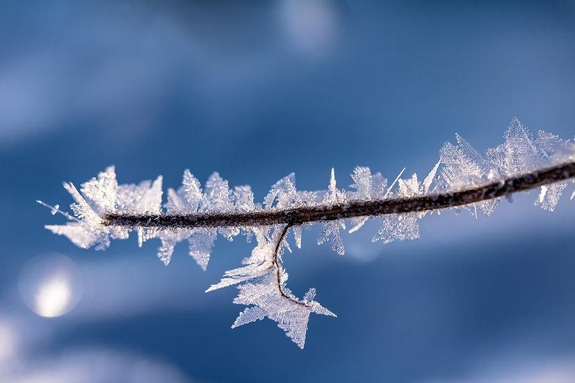 PrintPhotos Snow 02