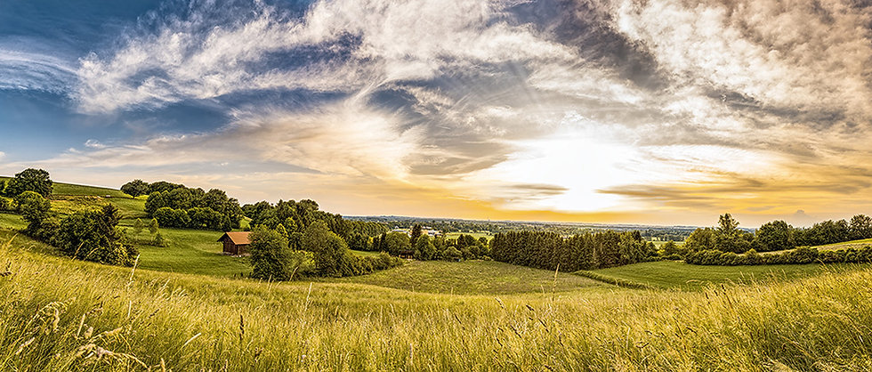 PrintPhotos Landscape 01