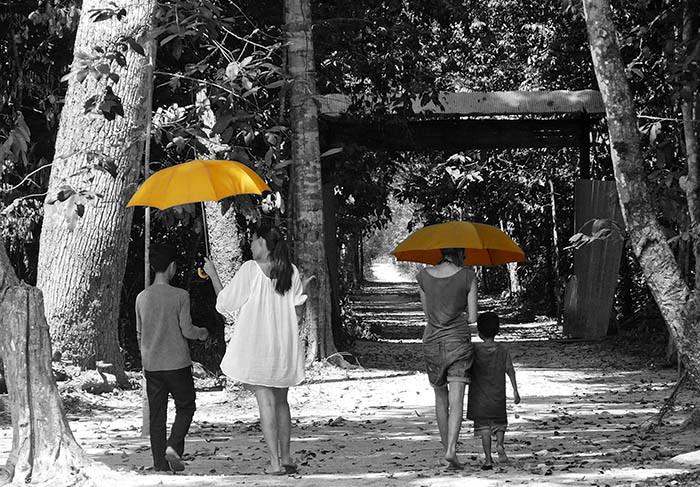 UmbrellasA3.jpg