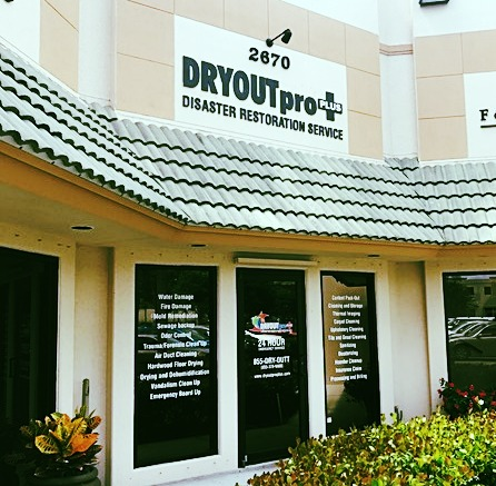 DRYOUTpro PLUS Office
