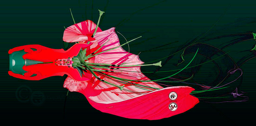 Flowers, Love and Disection