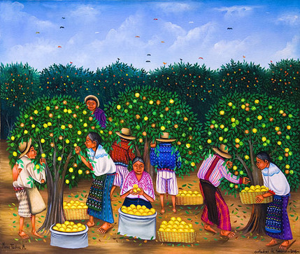 Cortadoras de Naranjas