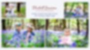 FB Cover Bluebells.jpg