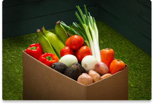 Foody Froover-Verduras.png