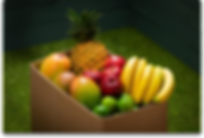 Foody Froover-Frutaspg.png