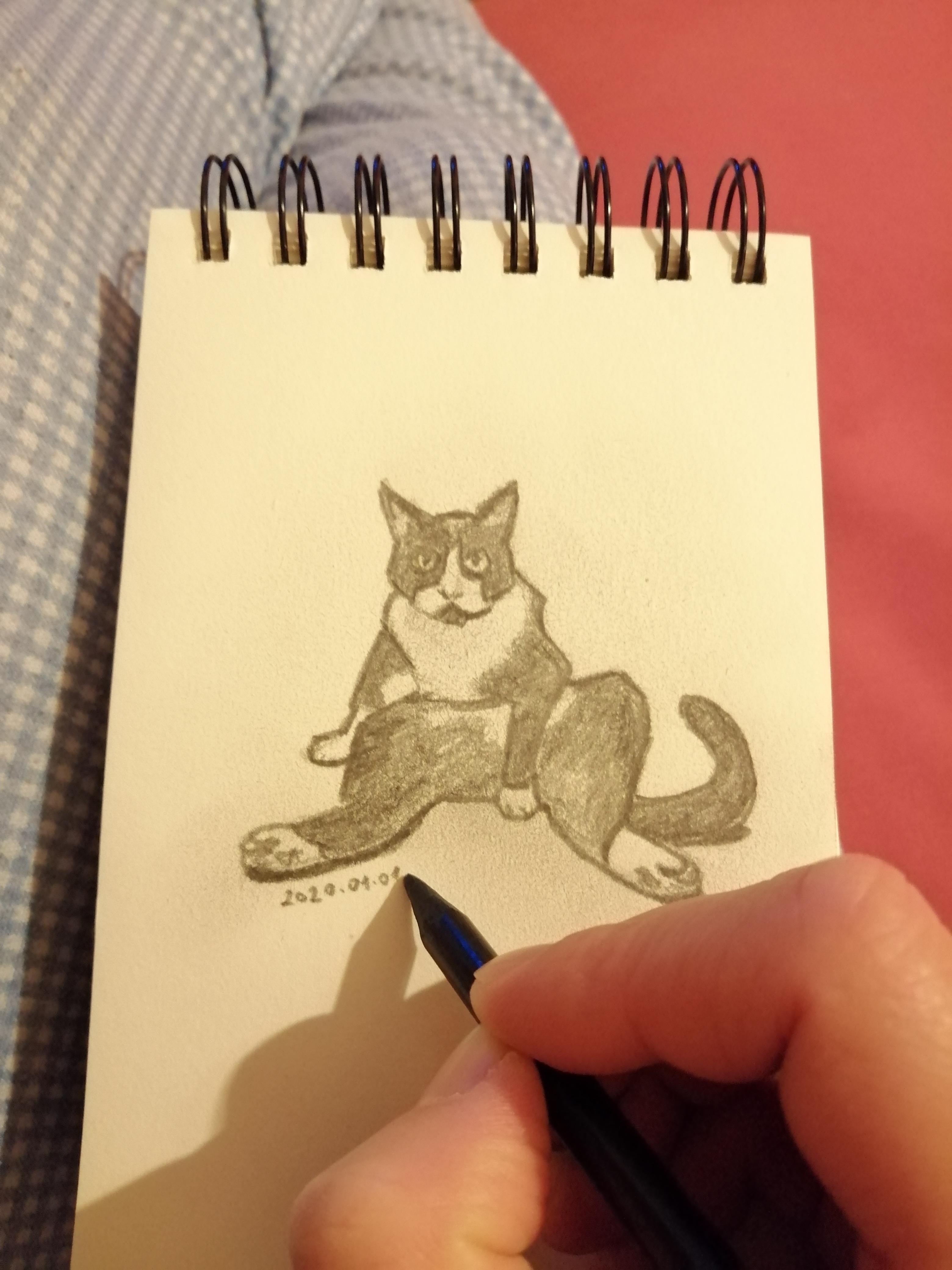 Zokni's sketch