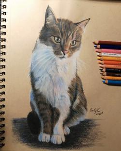 Portrait of Sanyi