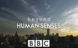 Beyond Human Senses