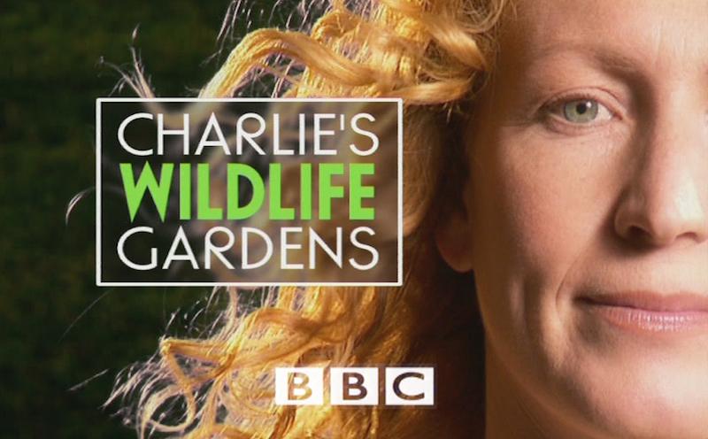 Charlies Wildlife Gardens