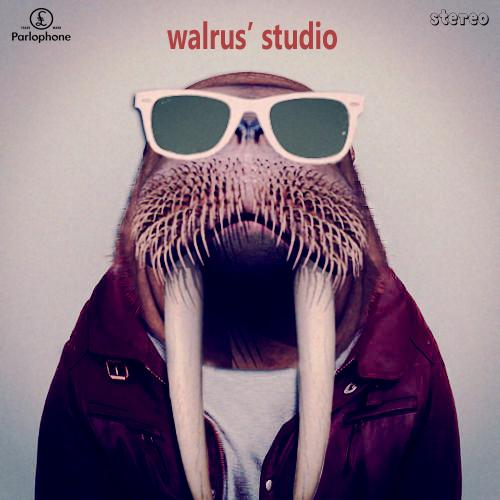 walrus album.jpg