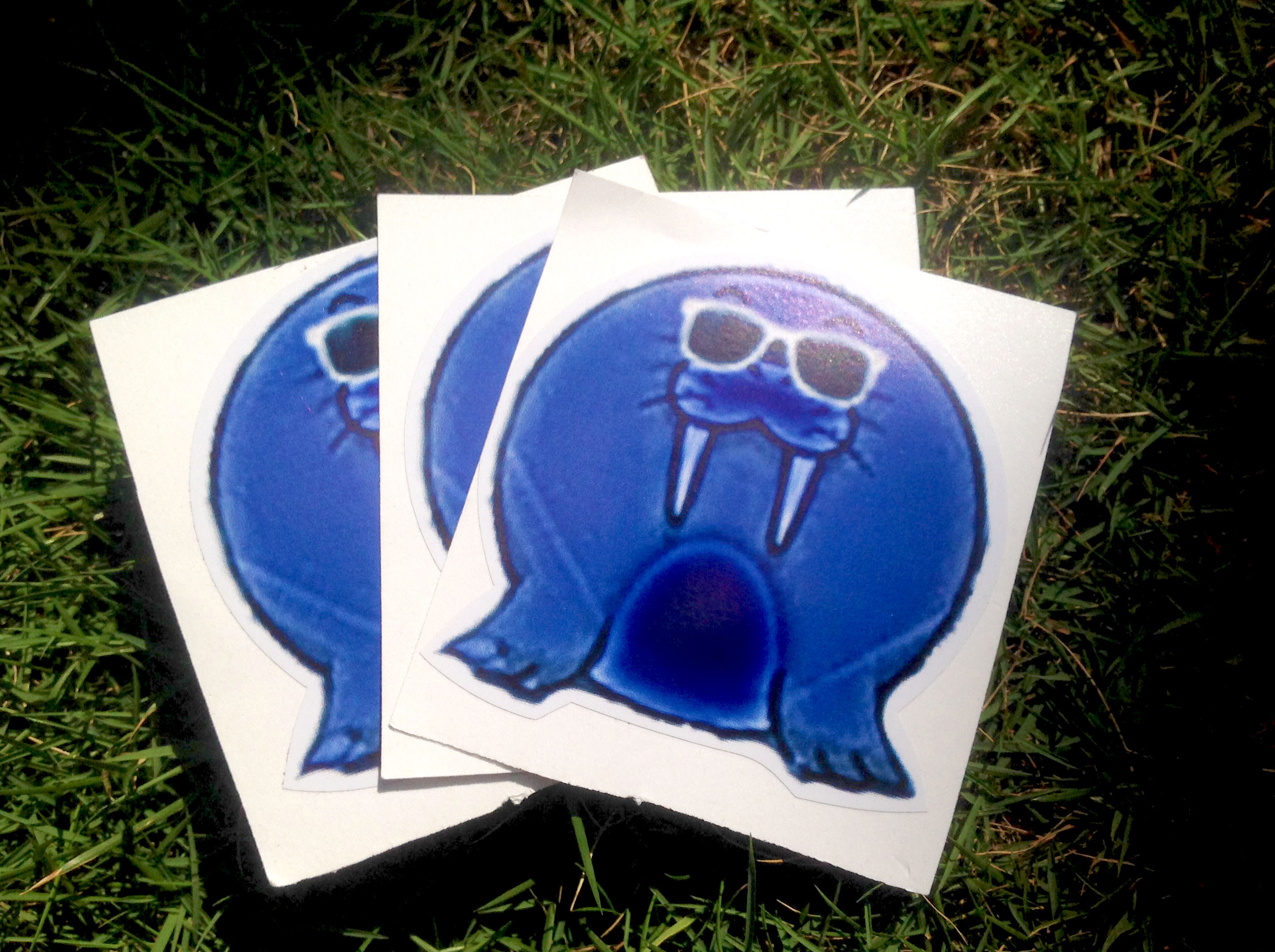walrus stickers