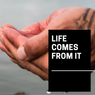 Life Comes from It
